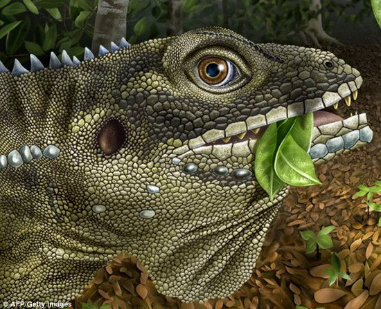 科学家称全球升温将进化出现巨型食草怪兽