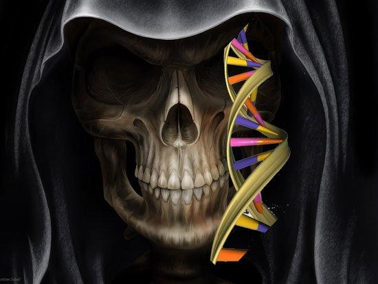 科学家发现可预测死亡时间的基因