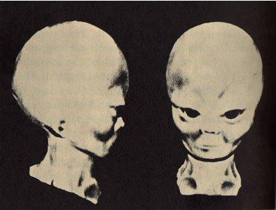 俄空中交通指挥员:UFO中发现说猫语的外星人