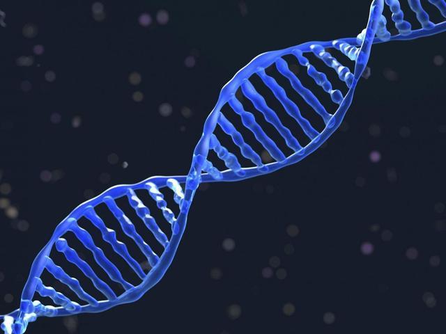 基因编辑技术大突破 未来或可延长人类寿命