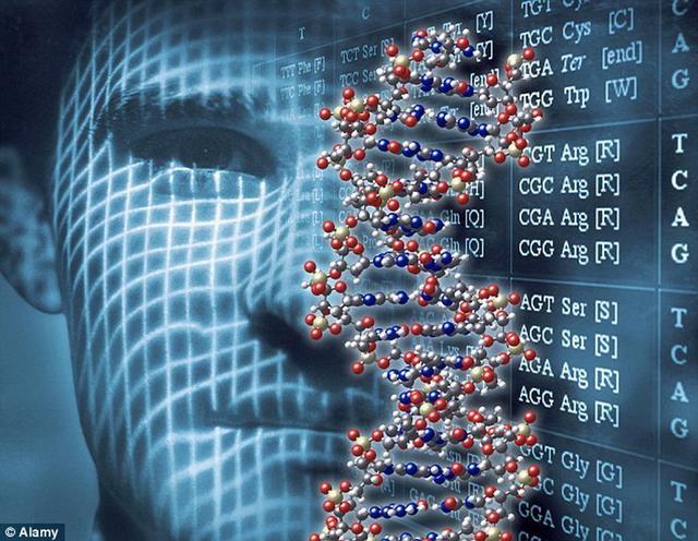 """最新研究发现人体存在145个""""外来基因"""""""