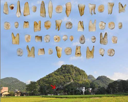 中国科学家发现最早的现代人类化石