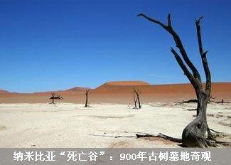 """走进纳米比亚""""死亡谷"""""""