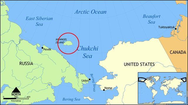 科学家发现阿拉斯加最后的猛犸象残骸 5600年前死于干渴