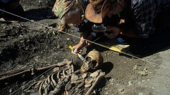 古代农民dna证实 欧洲农业源自石器时代移民