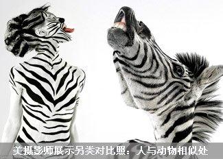 另类对比照:人与动物相似处