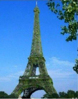 覆盖植被的铁塔效果图