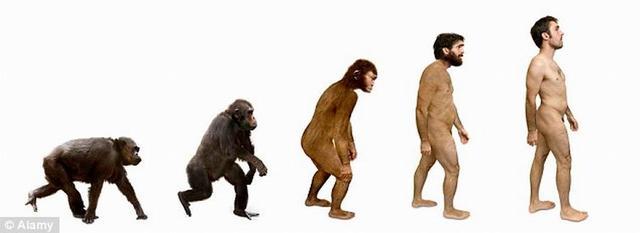 研究表明人类仍在缓慢进化 教育程度越高后代越少