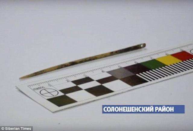 西伯利亚发现人类最早的针已有五万年历史