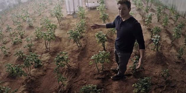 科学家称在火星除了种土豆 别的植物也能活