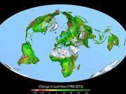 """人类活动排放二氧化碳意外成""""肥料"""" 地球变更绿"""