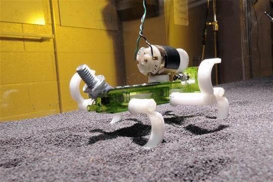 科学家设计6腿蜥蜴机器人有望未来勘测火星