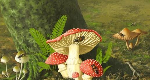 白垩纪,谁在享用蘑菇大餐?