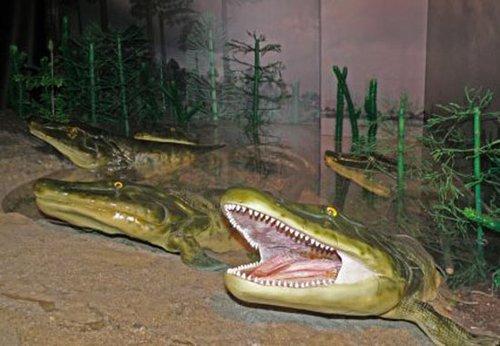 寻找四足动物原始祖先——提塔利克鱼