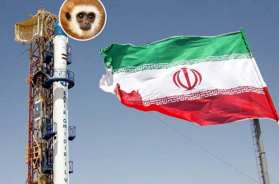 """伊朗""""探索者5号""""火箭将搭载猴子进太空"""