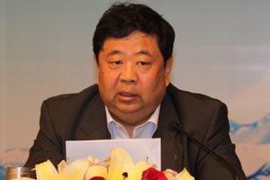 中国电信副总经理张继平发言