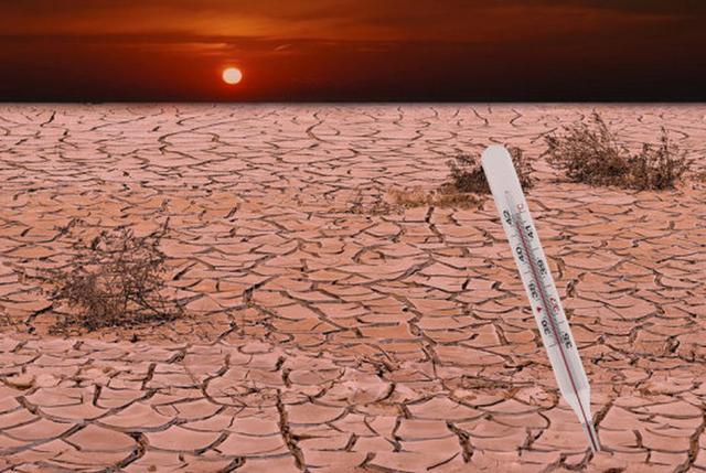环境危机加剧 热浪和干旱气候同现愈发频繁