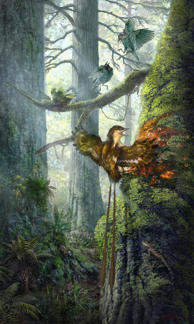 科学家首次在琥珀中发现恐龙时代古鸟 侏罗纪公园将成真?