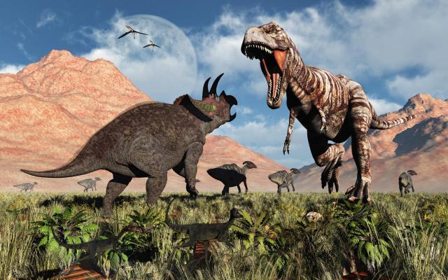 新化石阐明霸王龙进化之谜 先变聪明再变大