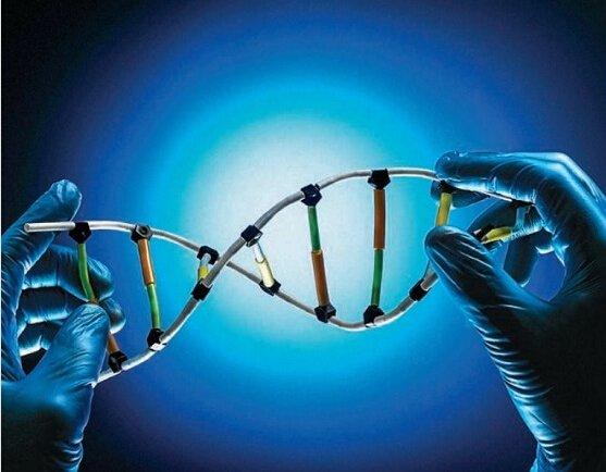 合成生物学:像组装机器一样组配生物
