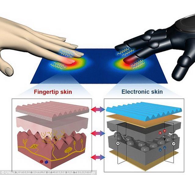 新型电子皮肤能够同时感知热量和压力变化