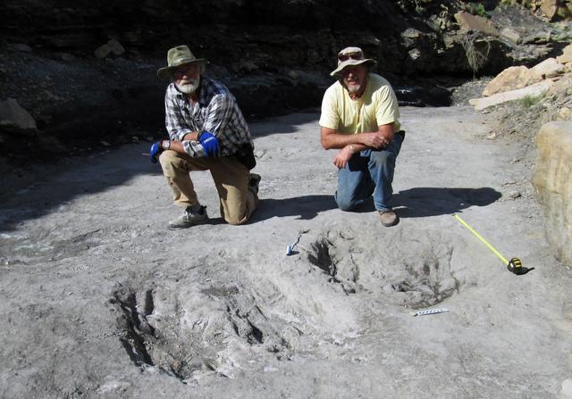 1亿年前的恐龙们怎么互相表达爱意?