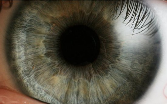 LG称三星Galaxy S 4涉嫌侵犯其眼球控制专利