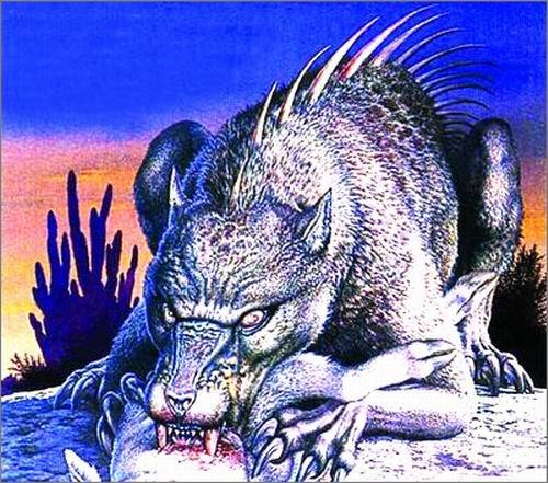 """神秘吸血怪兽""""卓柏卡布拉""""是患疥癣的郊狼"""