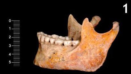 考古学家研究发现英国人源于西班牙地区