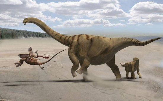 科学家探索蜥脚类恐龙如何进化出最长的脖子