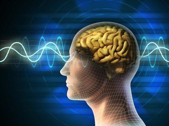 科学家称:人并非可分为左脑或者右脑支配型