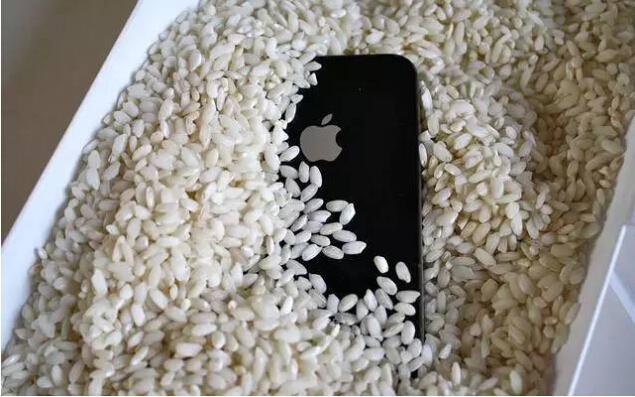 手机进水怎么处理最科学:扔大米里