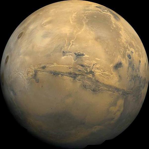 俄罗斯计划2017送猴子上火星:遭抗议
