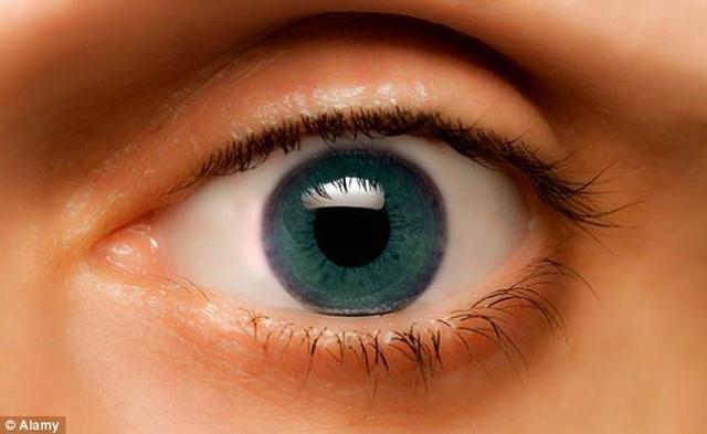 人类大脑具有惊人能力 识别图像仅13毫秒