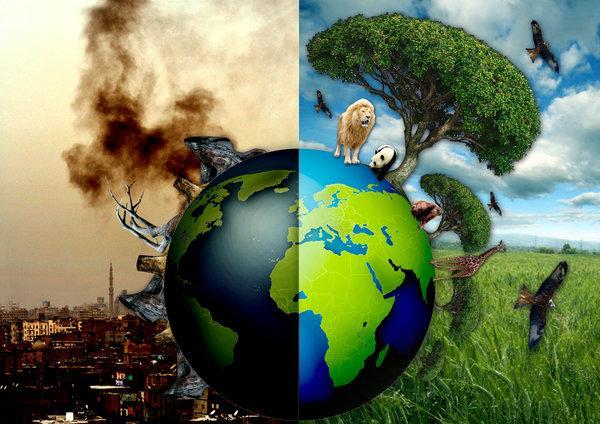 专家称:目前首要的是拯救人类自己而非地球