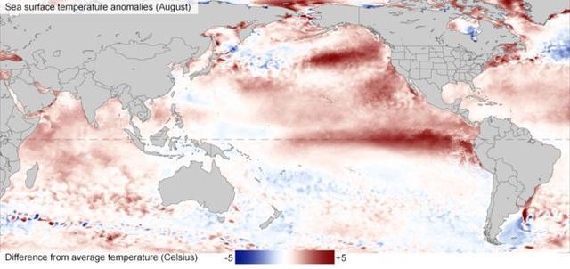 专家:地球或将迎来史上最酷热两年