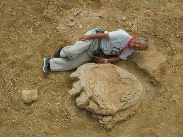 蒙古境内发现雷龙足印 长度为106厘米