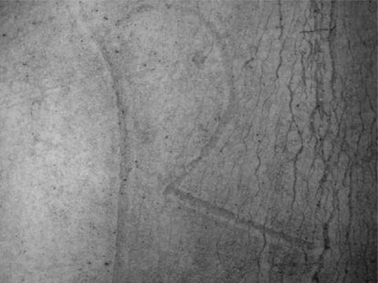 """科学家在公元3世纪卷轴中发现""""神秘咒语"""""""