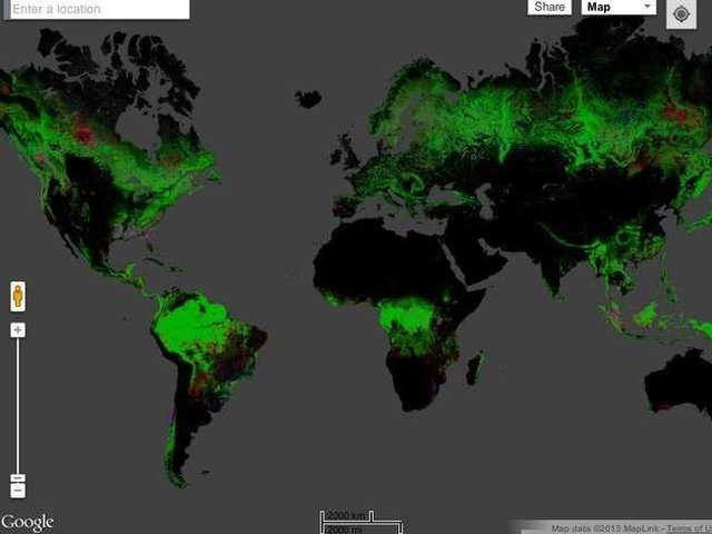 """谷歌推出高清森林""""流失""""地图"""