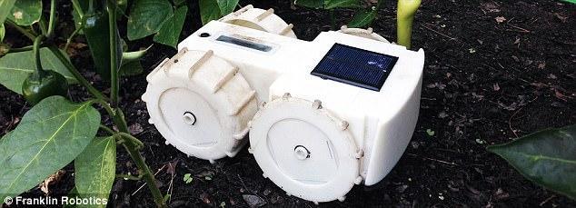 园丁机器人Tertill诞生,除草的活会自此消失?
