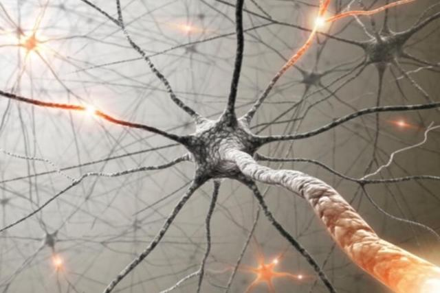 韩国研究团队打造超强人造神经:模仿神经元的学习方式