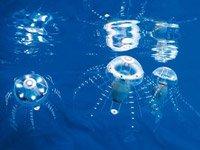 德国研制出逼真机械水母