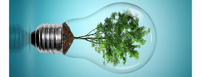 科学家研发生物燃料电池 效率近乎100%