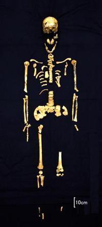 冲绳发现日本最古老全身人骨 距今约2.7万年