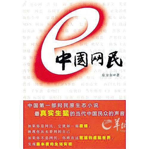 《中国网民》