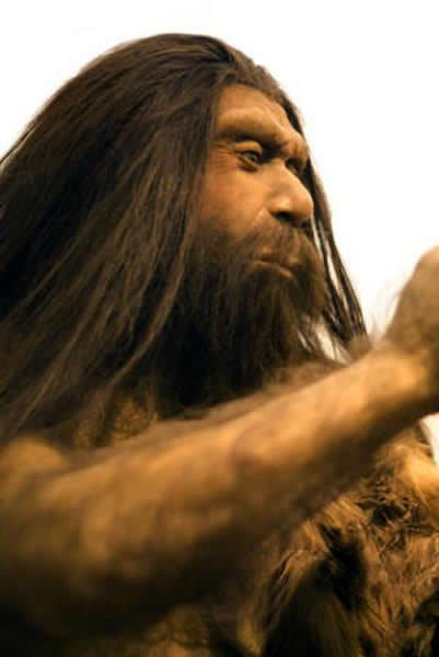 科学家认为尼安德特人实际上并没有消失