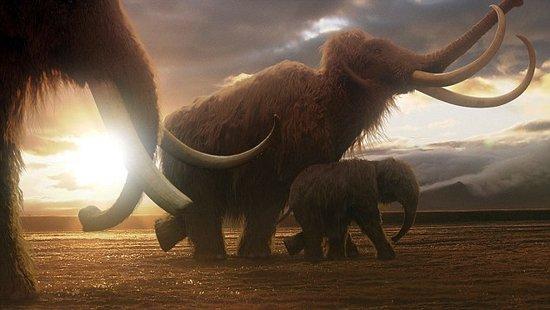 首例冰封万年史前猛犸象 尸体完整度极为罕见