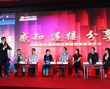 2012网络营销高峰论坛巅峰对话:视频营销的苦与乐