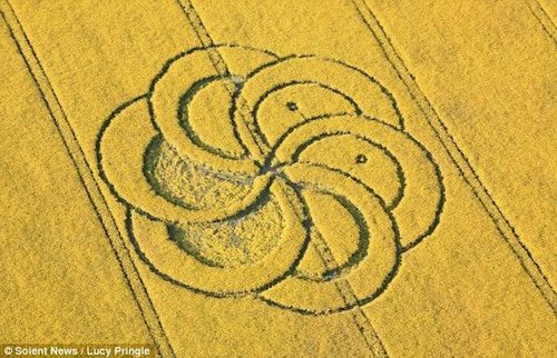英国西尔布利山脚:惊现巨大花朵状麦田怪圈