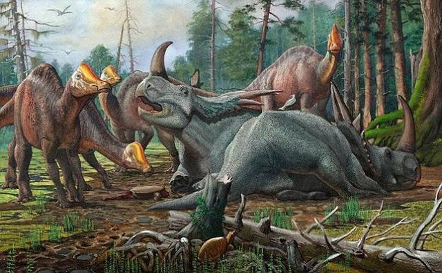 科学家最新研究推测远古恐龙睡觉时会做梦